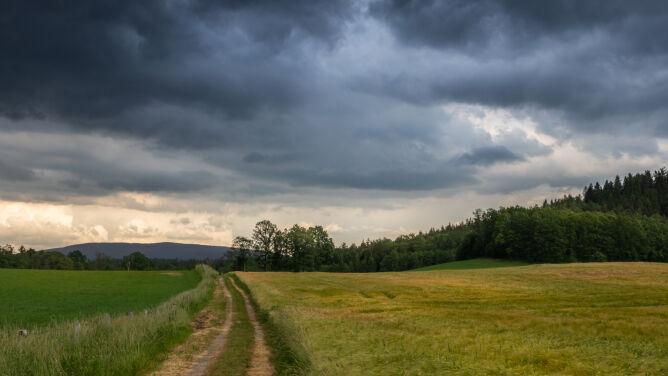 Ulewny deszcz, burze i przymrozki. Prognoza zagrożeń IMGW