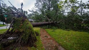 Huragan Sally uderzył w USA. Ponad pół miliona gospodarstw nie ma prądu