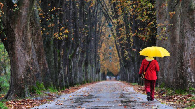 Pogoda na 5 dni: chłodno i deszczowo