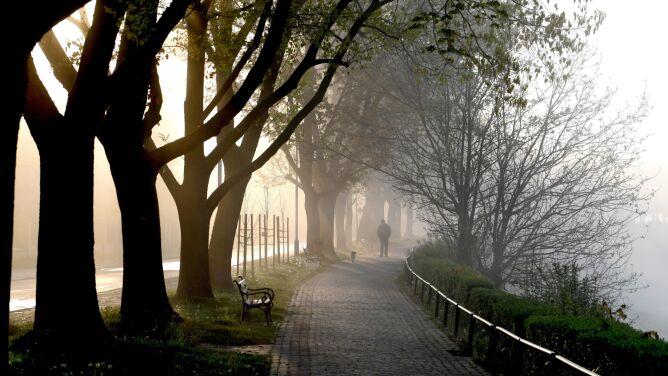 Mgła w Polsce. Widzialność jest ograniczona