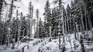 W górach wciąż zima. Ostrzeżenia lawinowe nawet trzeciego stopnia