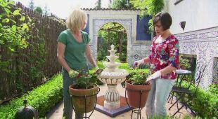 Stylowe ogrody podróżniczki Joli (odc. 510)